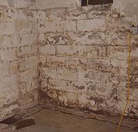 Peeling, Chipping, Basement Wall Coatings in Greene
